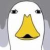 鸭子生活 表情包