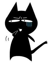 小黑猫 表情包