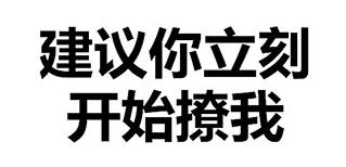 纯文字7 表情包