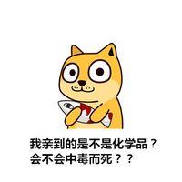 秋田犬系列 表情包