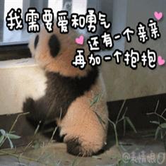 国宝熊猫 表情包