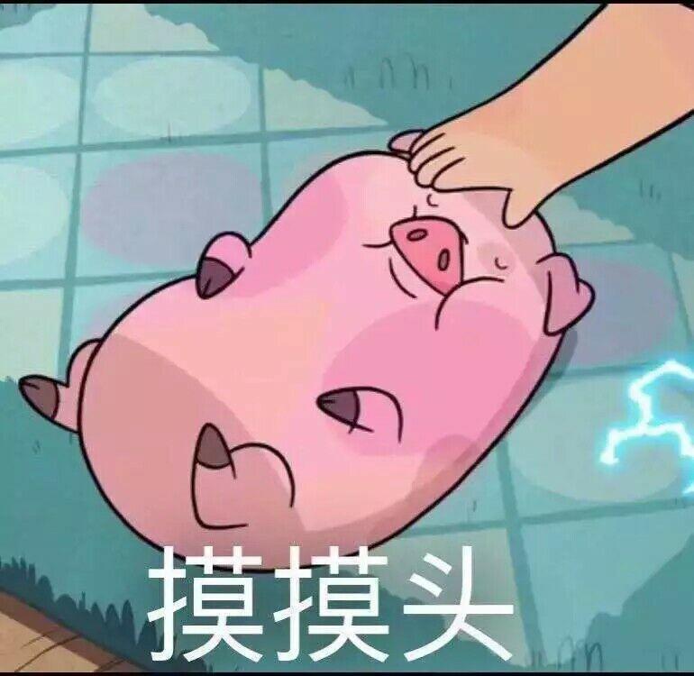 小红猪 表情包