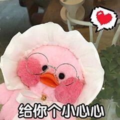 网红-玻尿酸鸭 表情包