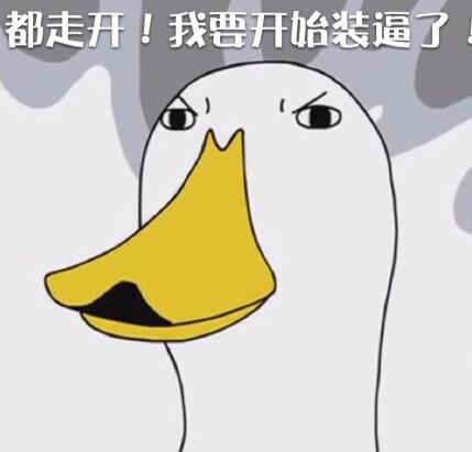 鸭子的生活 表情包图片