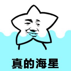 海星 表情包