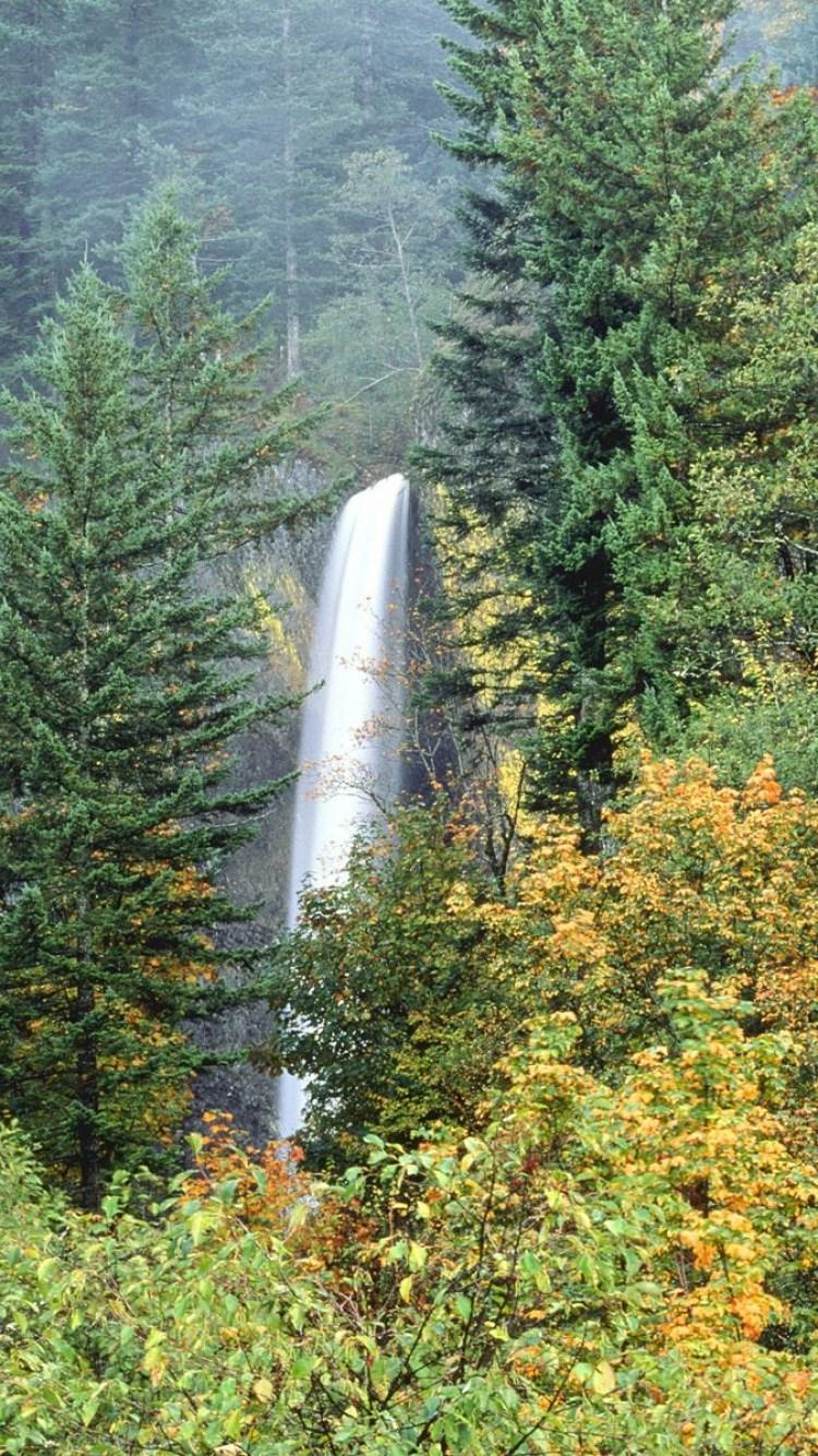 壁纸 风景 旅游 瀑布 山水 桌面 750_1334 竖版 竖屏 手机