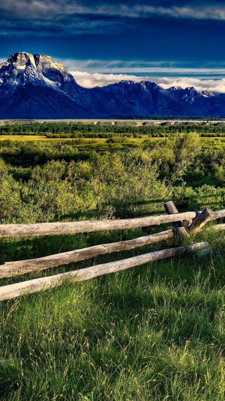 壁纸草原风景山水桌面750_1334竖版竖屏手机