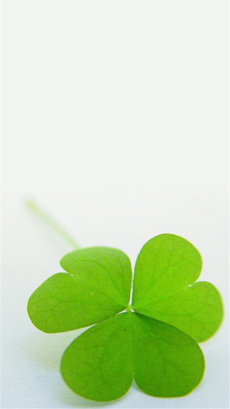背景 壁纸 绿色 绿叶 树叶 植物 桌面 750_1334 竖版 竖屏 手机