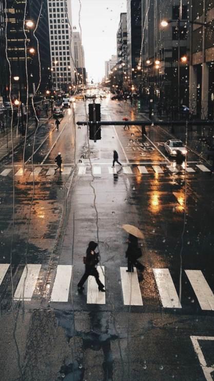 雨滴,雨天,街景,斑马线,街道,彩色